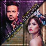 Échame La Culpa (Not on you Remix) (single)